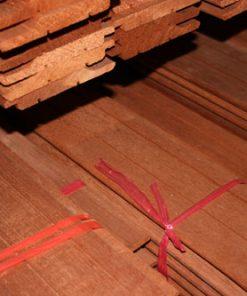 Aziatisch Red Cedar