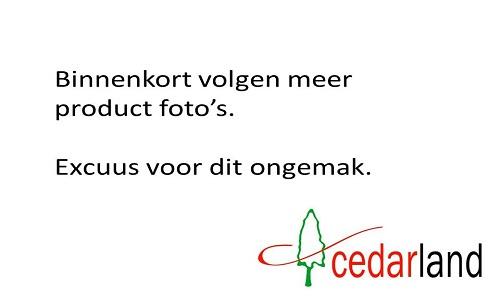 Cedarland productfoto